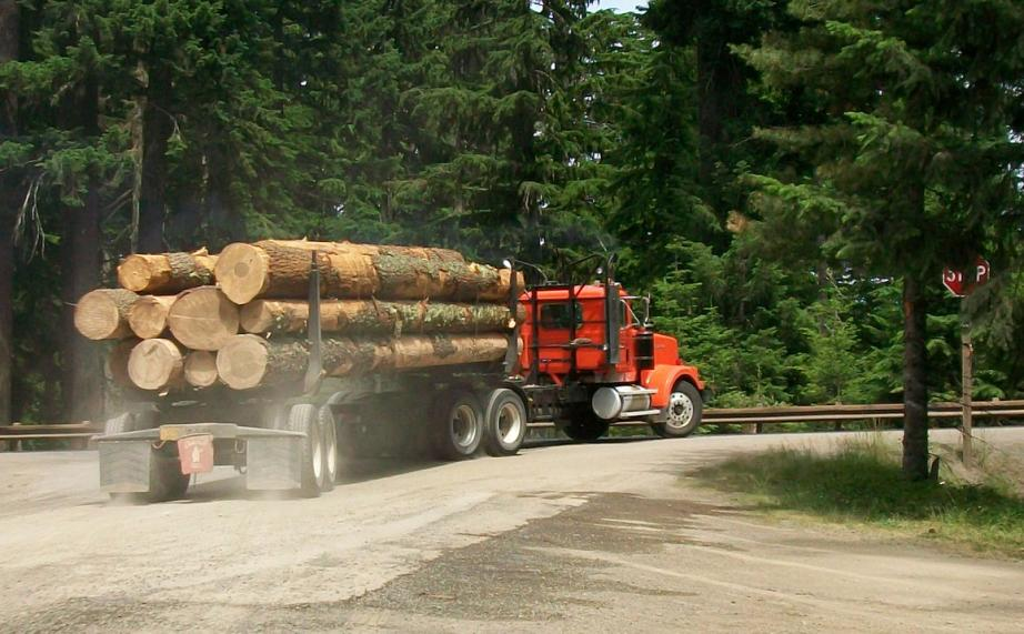 Timber Industry Faces Shortage of Log Truckers